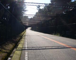 hyogo-sakase04.JPG