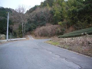 kyoto-uratai03.JPG