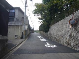 nara-shigi02.JPG