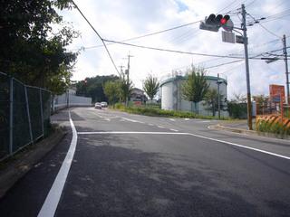 nara-shigi03.JPG