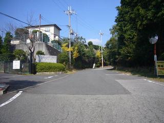 osaka-satsuki10.JPG