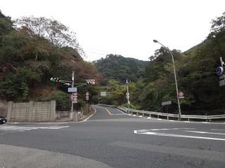 hyogo-orokko01.JPG