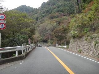 hyogo-orokko05.JPG