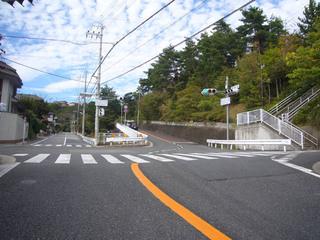hyogo-sakura03.JPG