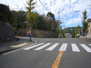 hyogo-sakura06.JPG