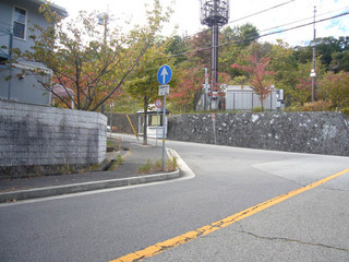 hyogo-sakura07.JPG
