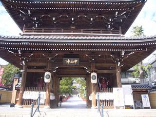 hyogo-sakura11.JPG