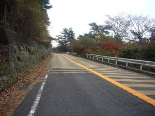 hyogo-shinrin03.JPG