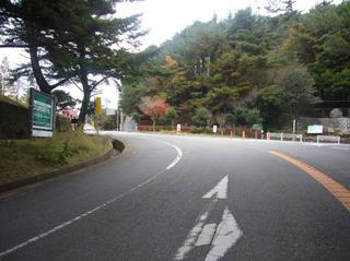 hyogo-shinrin05.JPG