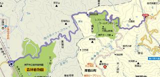 hyogo-shinrin0a.JPG