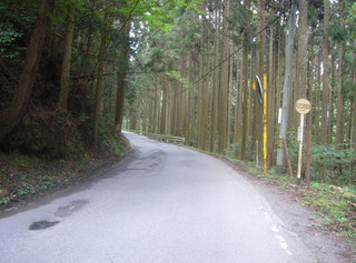 kyoto-hanase03.JPG