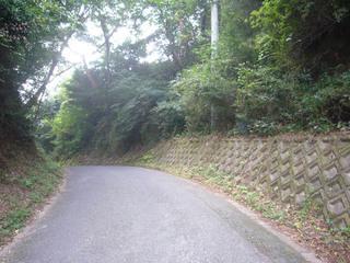 kyoto-inuuchi08.JPG