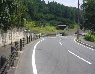 kyoto-kumo01.JPG