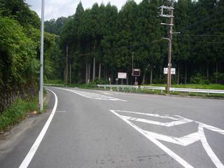 kyoto-kumo02.JPG