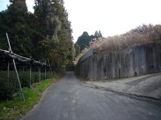 kyoto-mand03.JPG