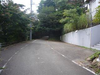 kyoto-oshio08.JPG