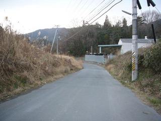 kyoto-uratai09.JPG