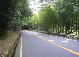 kyoto-yamank06.JPG