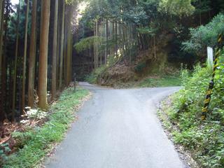 kyoto-yosib02.JPG