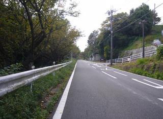 nara-shigi06.JPG