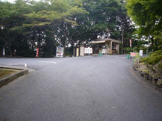 shiga-iwama10.JPG