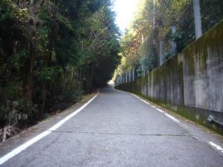 waka-nakao04.JPG
