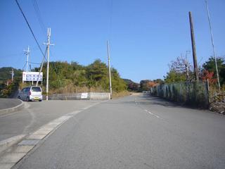 waka-saru04.JPG